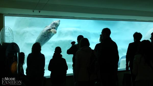 L'Aquarium du Musée de la Mer de Biarritz