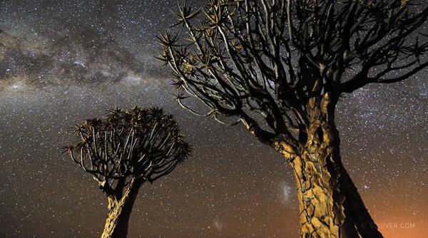 Namibian Nights - un timelapse de Marsel van Oosten